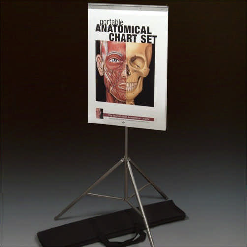 The Portable Anatomical Chart Set with Tri-Pod